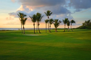 Gulf_Stream_Golf_Course_palms